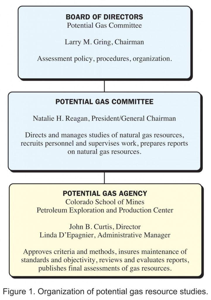 Figure 1. Organizatiion of Potential Gas Resource Studies